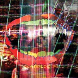 Animal Collective_Centipeade Hz